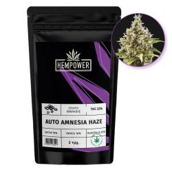 Hempower Seeds Auto Amnesia Haze fem. 2τμχ