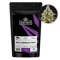 Hempower Seeds Auto Amnesia Haze fem. 5τμχ