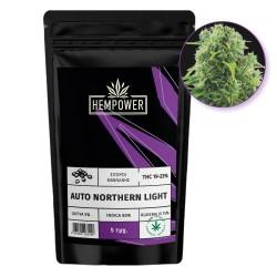 Hempower Seeds Auto Northern Lights fem. 5τμχ