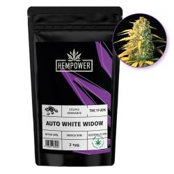 Hempower Seeds Auto White Widow fem. 2τμχ