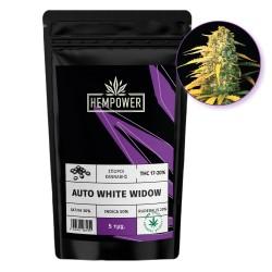 Hempower Seeds Auto White Widow fem. 5τμχ
