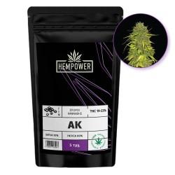 Hempower Seeds fem. AK 5pcs