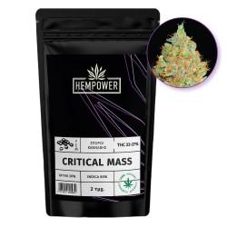 Hempower Seeds  fem. Critical Mass 2τμχ