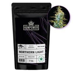 Hempower Seeds fem. Northern Light 2pcs